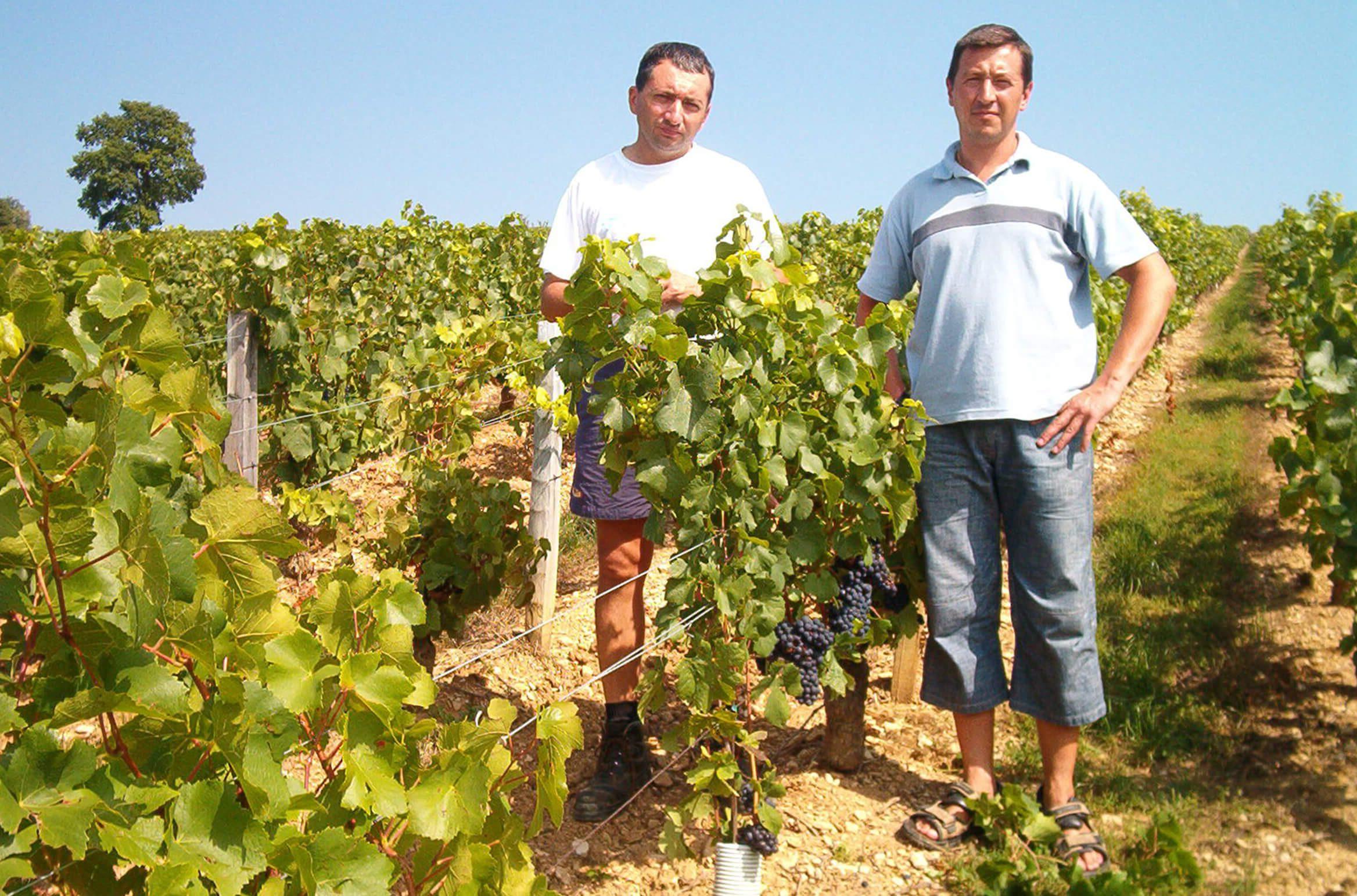 Pierre-Yves et Olivier FICHET sur dans les vignes 2005